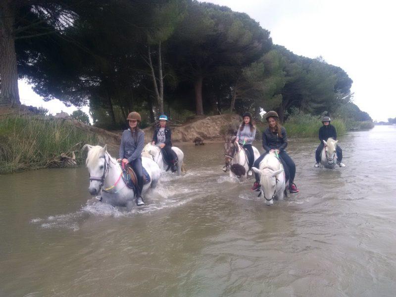 balade-a-cheval-camargue1-mas-de-letoile